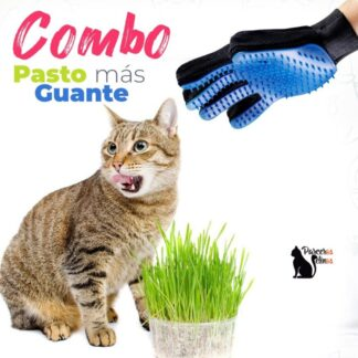Combo Pasto gatuno + guante para peinar Parceros Felinos