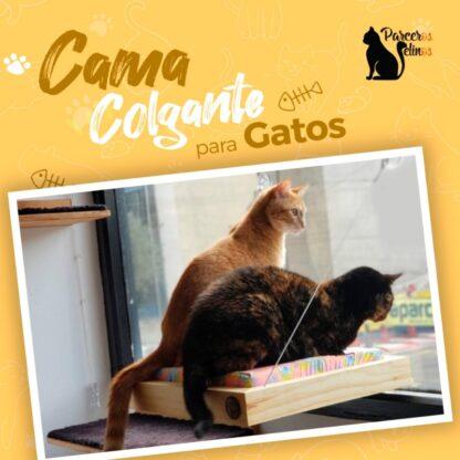 CAMA COLGANTE PARA GATOS parceros felinos