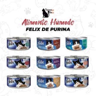 Alimento húmedo Felix de Purina