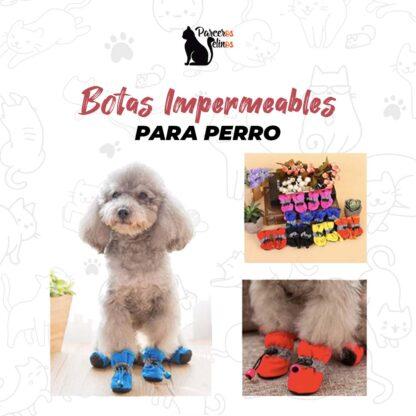 Botas Impermeables Para Perro