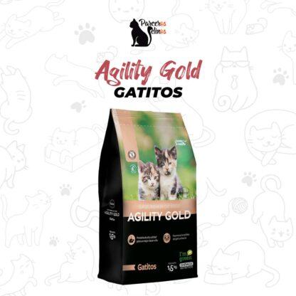Agility Gold Gatos Gatitos