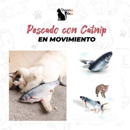 Pescado con Catnip en movimiento